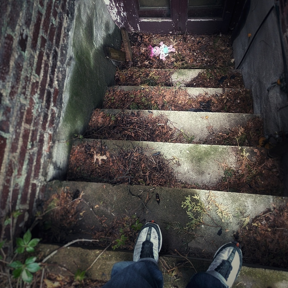 photo of a small doll at the bottom of a set of dirty concrete steps in the space between houses